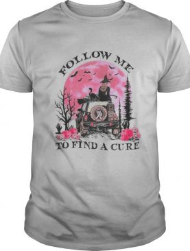 Halloween witch follow me to find a cure cancer awareness shirt