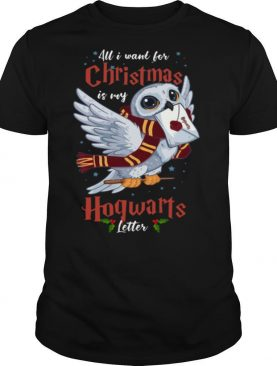 All I Want For Christmas Is My Hogwarts Letter shirt